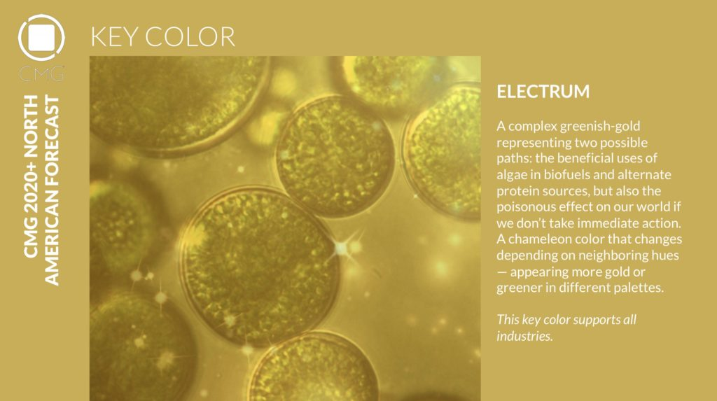 Color Marketing Group Announces 2020+ North American Key Color - Electrum