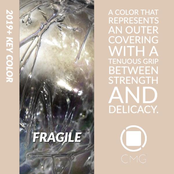 CMG Key Color 2019 Fragile