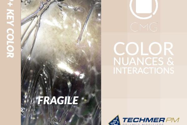 Color Exploration Fragile