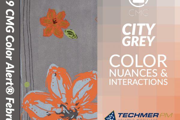 COLOR ALERT MAXIMIZE Color Exploration CITY GREY