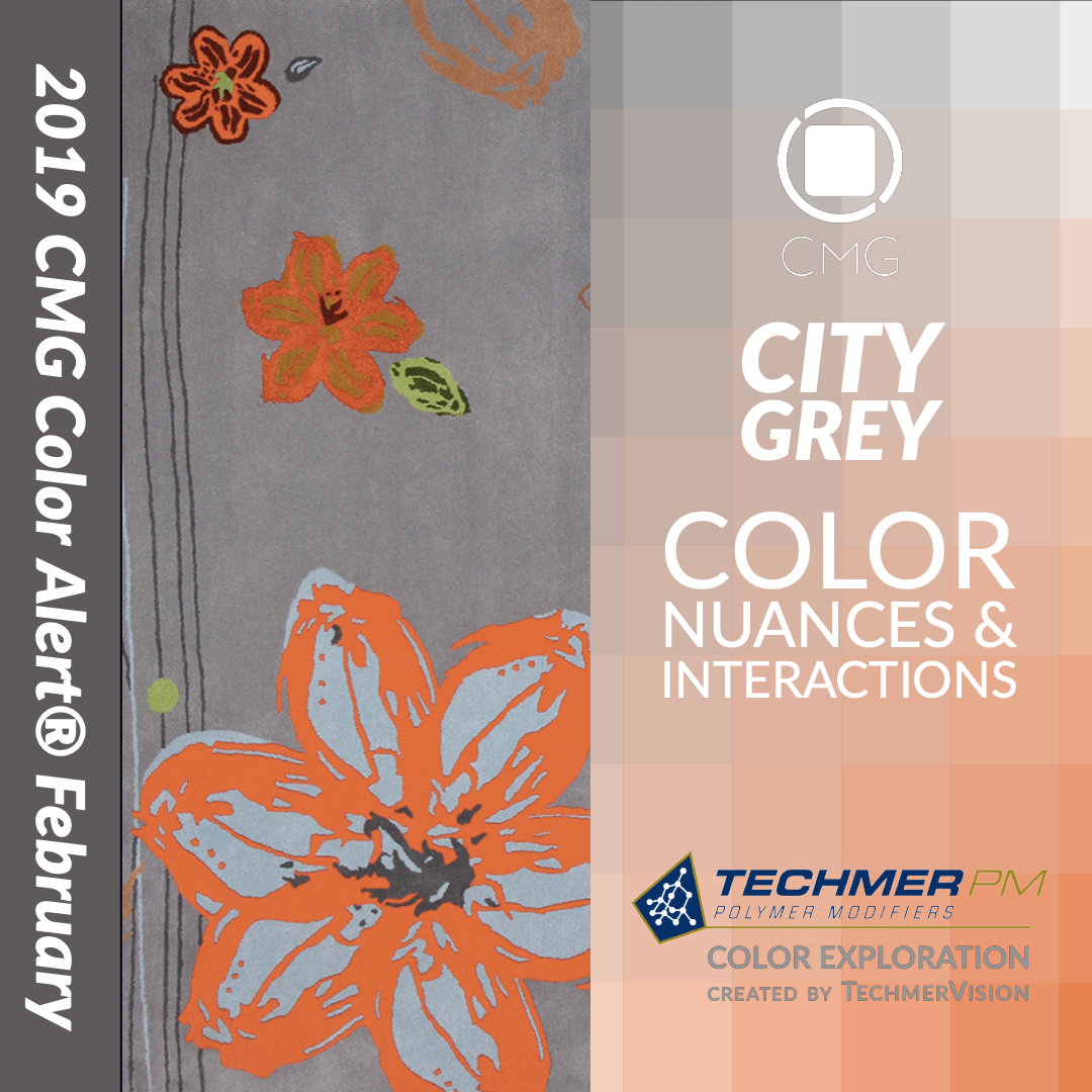 COLOR ALERT MAXIMIZE Color Exploration CITY GREY