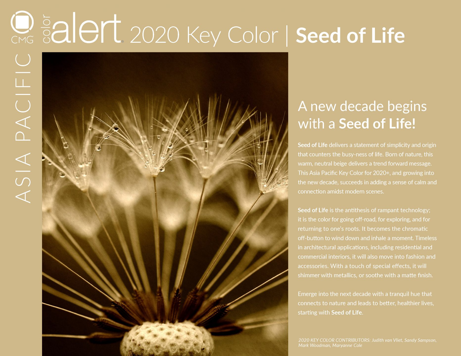 Color Marketing Group® | International Trend and Color
