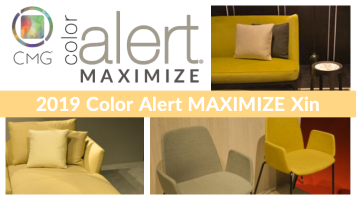 Color Alert MAXIMIZE BLOG