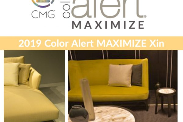 Color Alert Maximize Xin