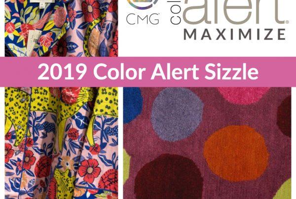 CMG 2019 DEC SIZZLE