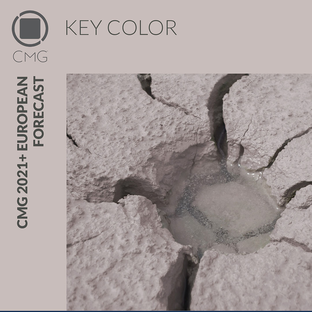 CMG 2021 Key Color Raison d'etre