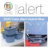CMG Feb 2020 Hybrid Blue Color Alert