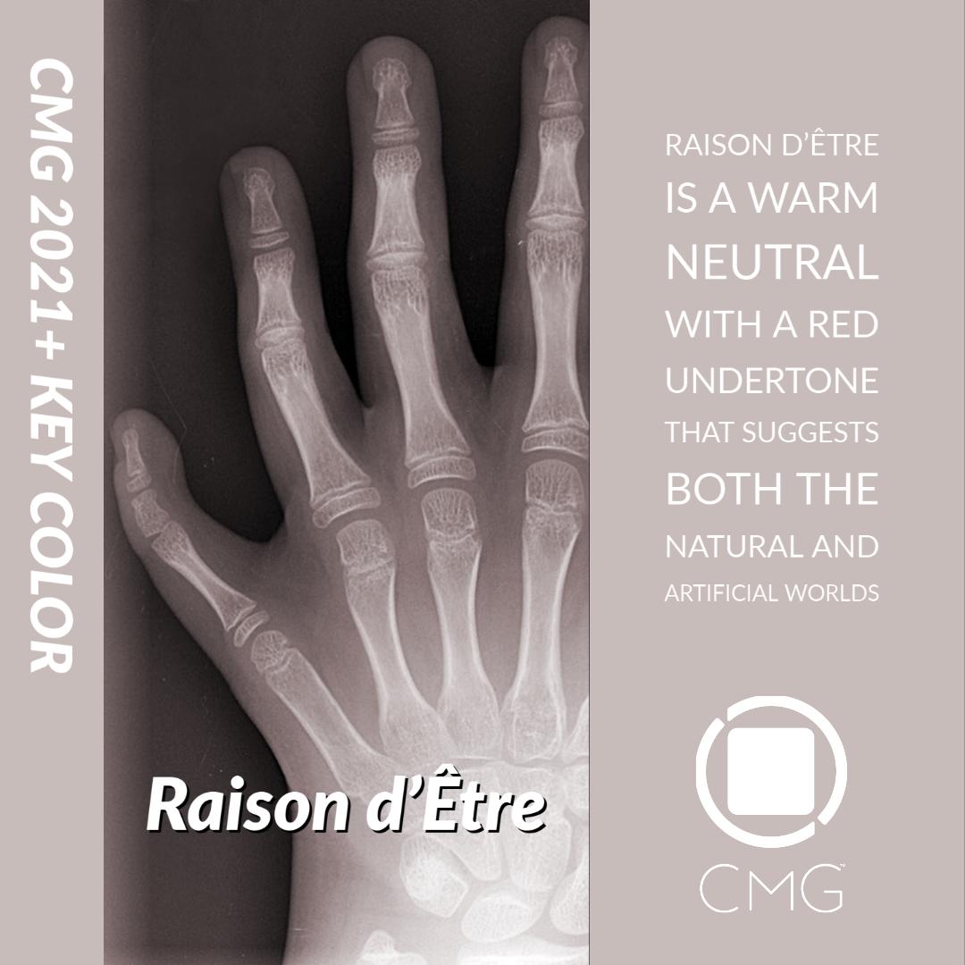 CMG 2021 key Color Raison d'Être